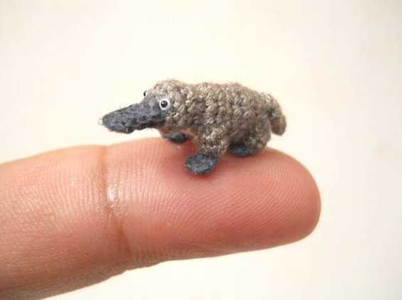 Miniature platypus